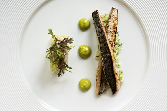 R Gill, Food Photographer, Mackerel starter